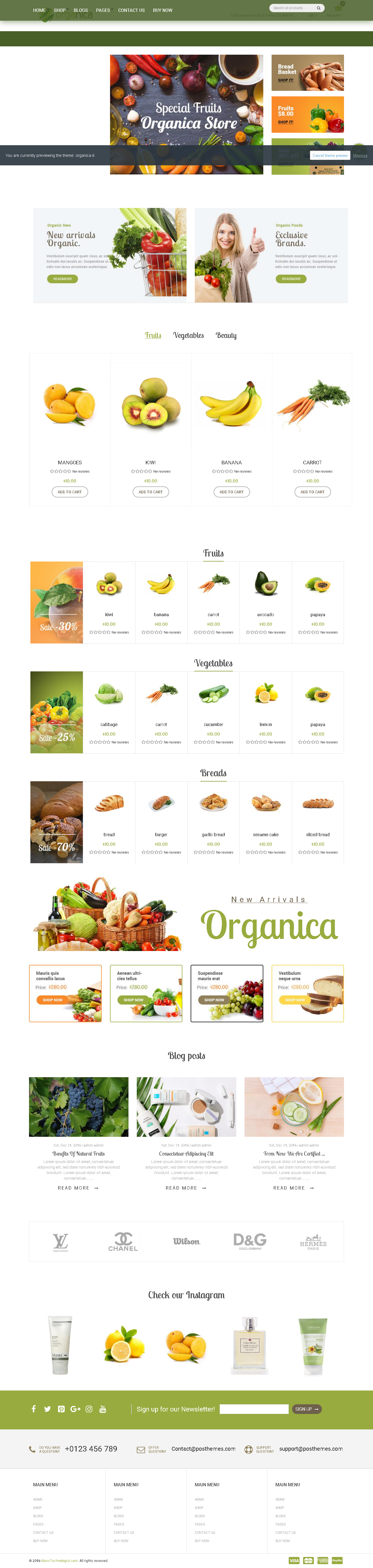 5 Best SHOPIFY Premium Themes Collection for Food Store 2017 - Organica - Organic, Beauty, Natural Cosmetics, Food, Farn and Eco drag and drop Shopify Theme