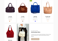 5 Best SHOPIFY Premium Themes Collection for Handbags Store 2017 - Tote - Shoes and Bags Shopify theme