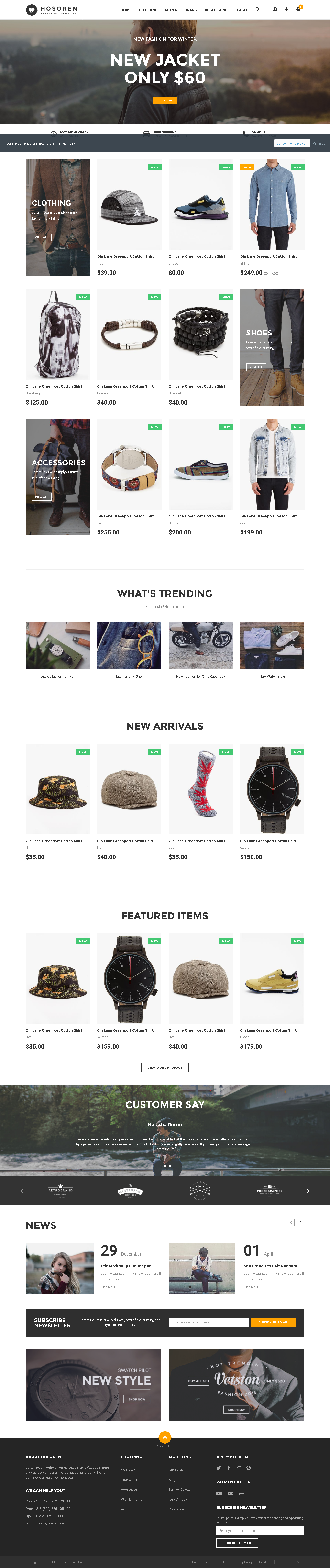 5 Best SHOPIFY Premium Themes Collection for RETAIL Store 2017 -Hosoren - Responsive Shopify Theme
